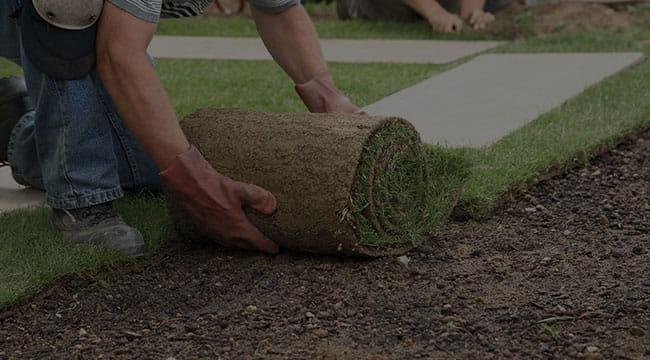 Suwanee Lawn Care